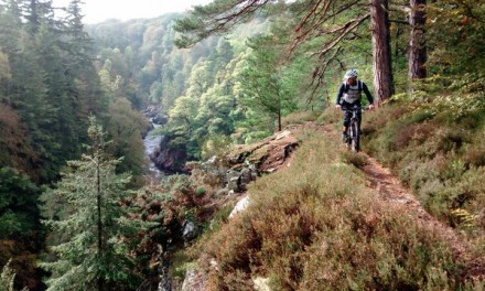 Developing Tayside Mountain Biking in Tayside and Fife