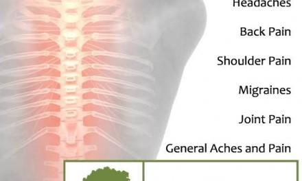 Duigan Chiropractic – Perthshire's Certified Posture Expert